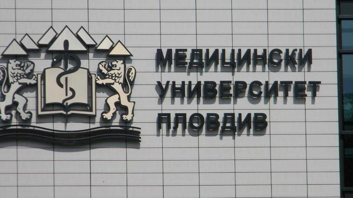muplovdiv2