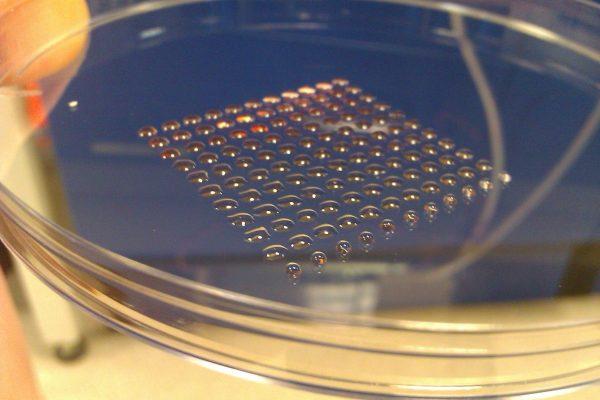 3d-printed-cells